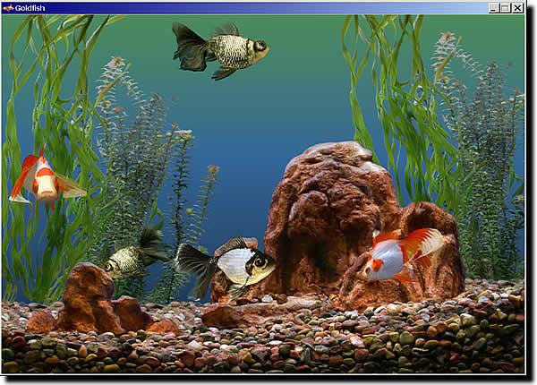 Download Realistic Aquarium For Mac