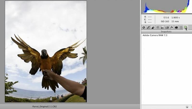 portalprogramas photoshop