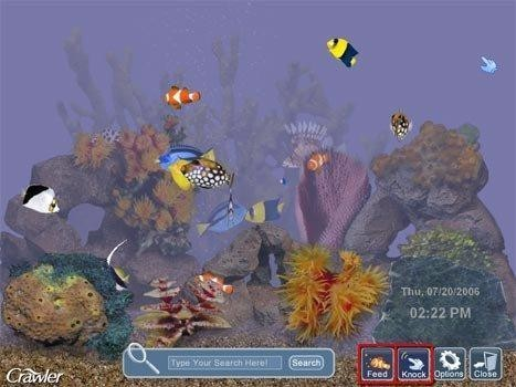 Image 1 of 3D Tropical Aquarium Screensaver. ‹ ›