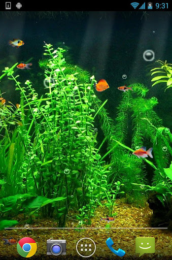 Image 1 of Aquarium Live Wallpaper HD for Android ...