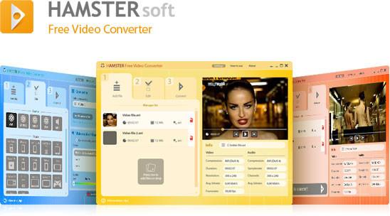 descargar programa hamster free video converter