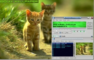 Bionix Desktop Wallpaper Changer Descargar Gratis