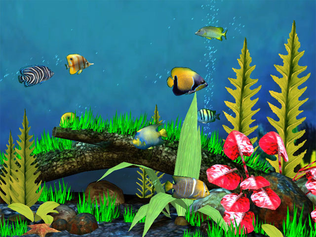 Fish aquarium 3d salvapantallas descargar gratis for Bajar protector de pantalla gratis