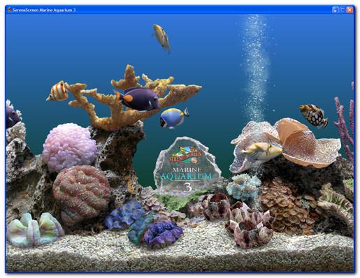 Serenescreen marine aquarium descargar gratis for Protector de pantalla en movimiento