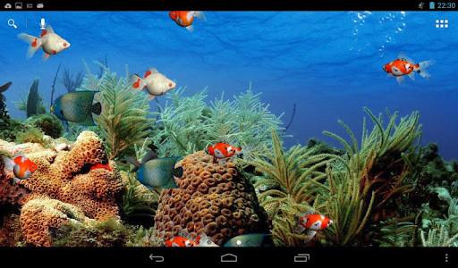 Acuario De Pantalla En Vivo Para Android Descargar Gratis