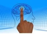 Las mejores apps para entrenar la mente en milbits
