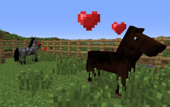 Gua sobre los caballos en Minecraft