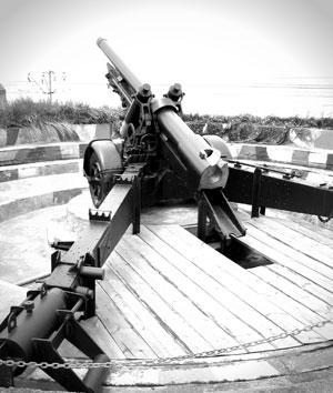 Armas y cañones