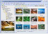 Los mejores programas de imágenes del 2008 en milbits